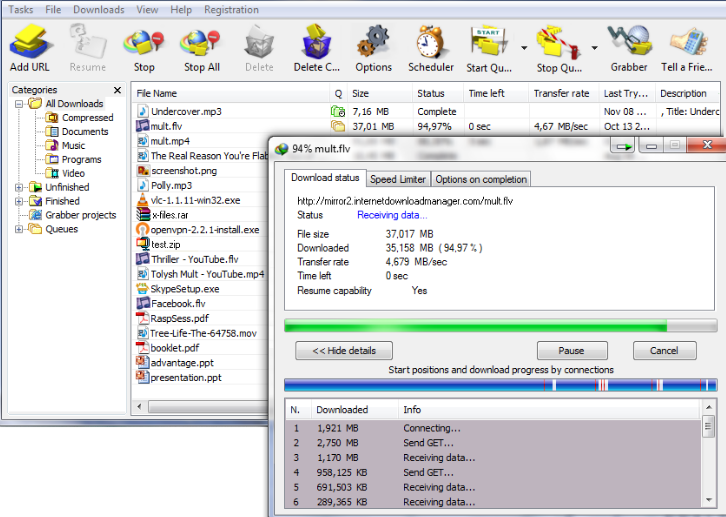 Internet Download Manager windows