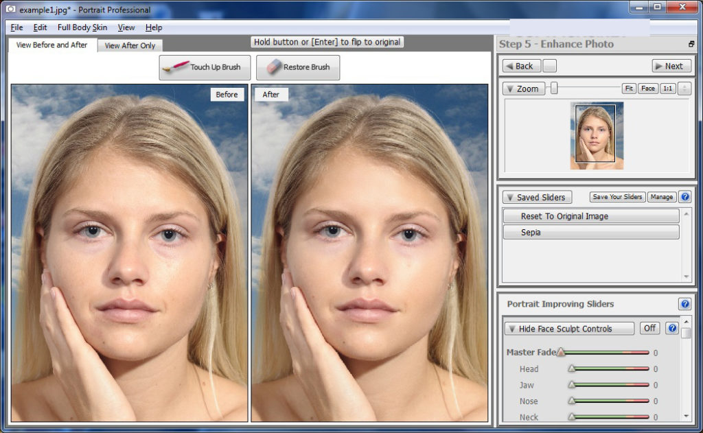 Portrait Professional Studio windows